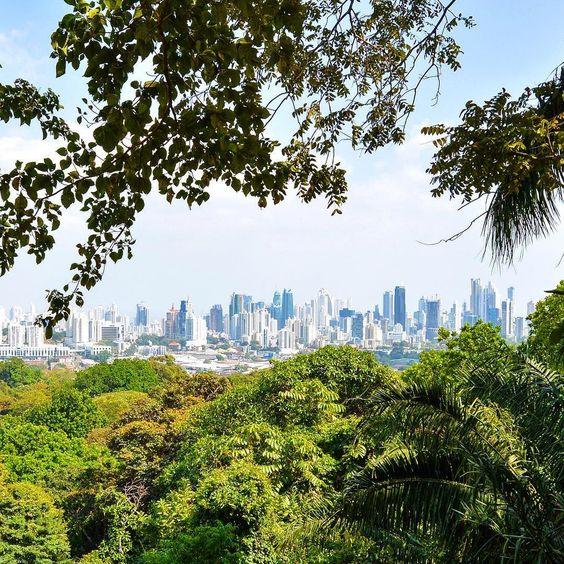 ¿Qué actividad saludable puedo hacer en Ciudad de Panamá?